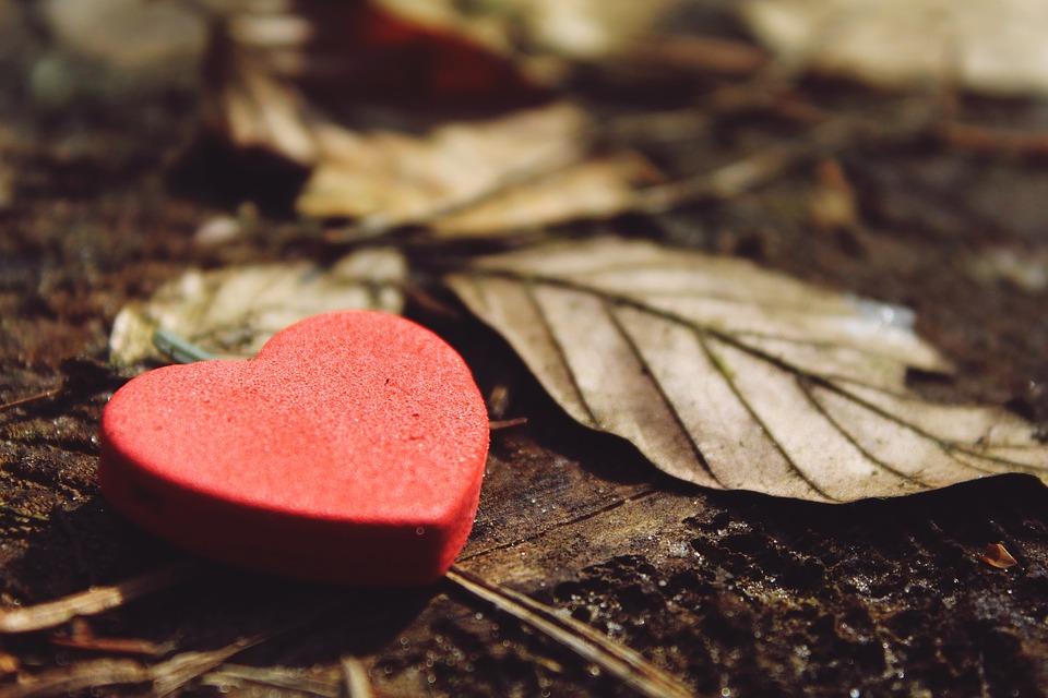 heart-1318850_960_720